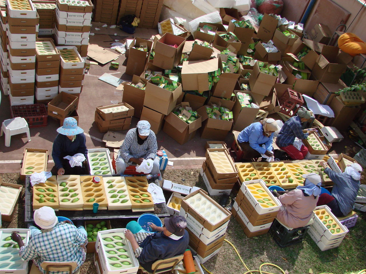 Adult Adults Only Day Food Food And Drink Freshness High Angle View Large Group Of Objects Market Market Stall Men Occupation Outdoors People Real People Stack