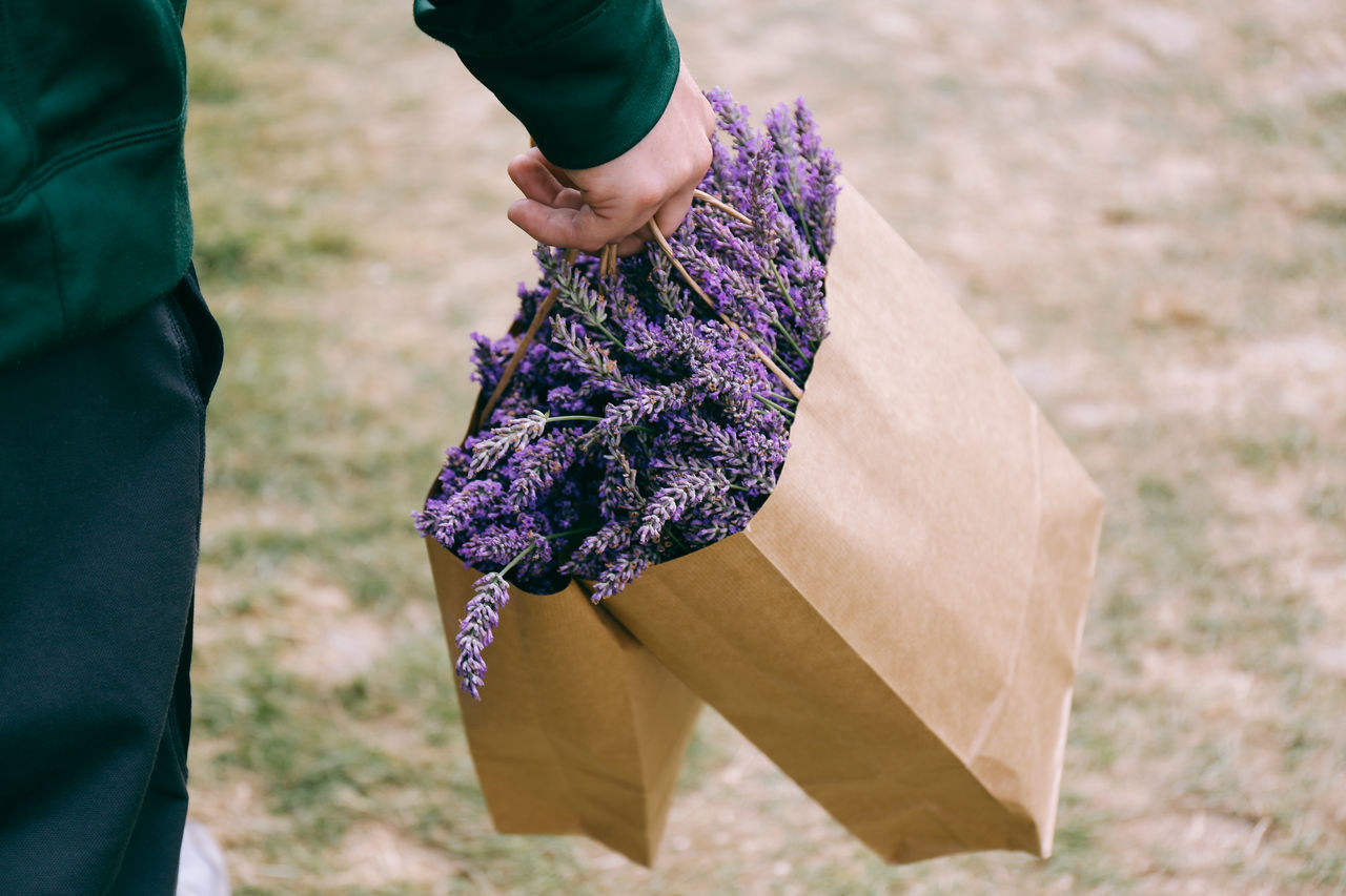 It's all about the smell Action Calm Cut Day Field Fresh Full Frame Fun Holding In Hand Human Body Part Human Hand Lavender Leisure Activity Lifestyles Man Nature One Person Outdoors Paper Bag Pick Your Own Pick Your Own Fruit Purple Real People Water Weekend Live For The Story