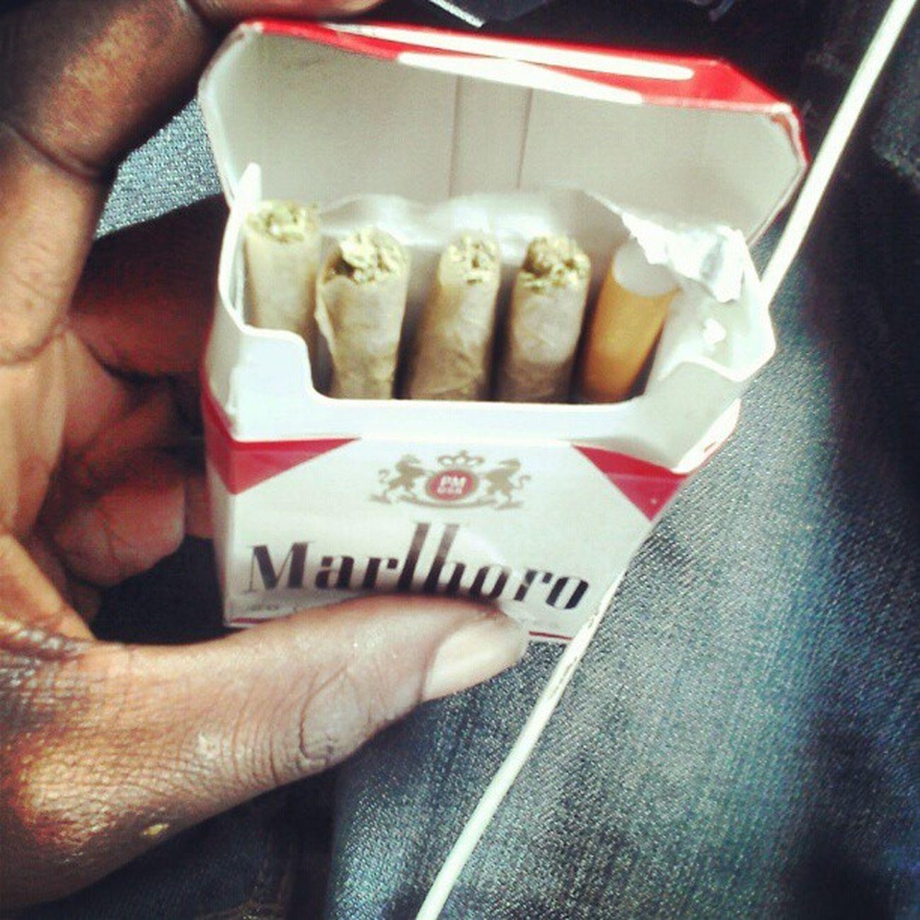 Great ratio Gethigher Smoke 420 Weed Ganja Doobie  Skycamp