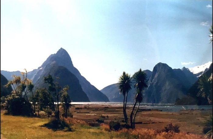 New Zealand Scenery Beauty In Nature Nature Scenics Landscape Mountain Range Idyllic Milford Sound