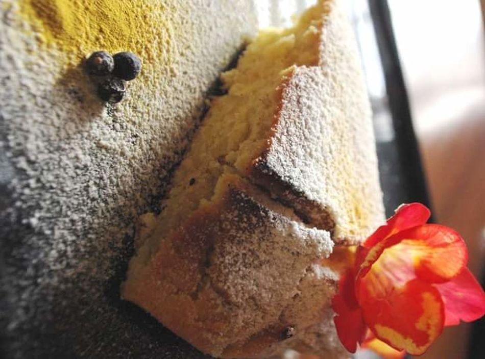 Dolcino Food Sweet Food Cakes Cake Indoors  Sweet Flower Flower Food