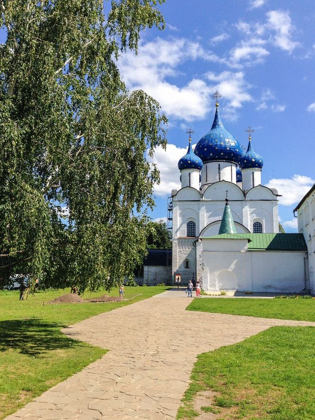 Cathedral of the Nativity of the Theotokos, Russia, Suzdal Russia. Suzdal Russia Suzdal Golden Ring Suzdal Kremlin Theotokos Cathedral Religion Orthodox Church Summer Day Kremlin Landmark White Tree Dome UNESCO World Heritage Site Travel Destinations