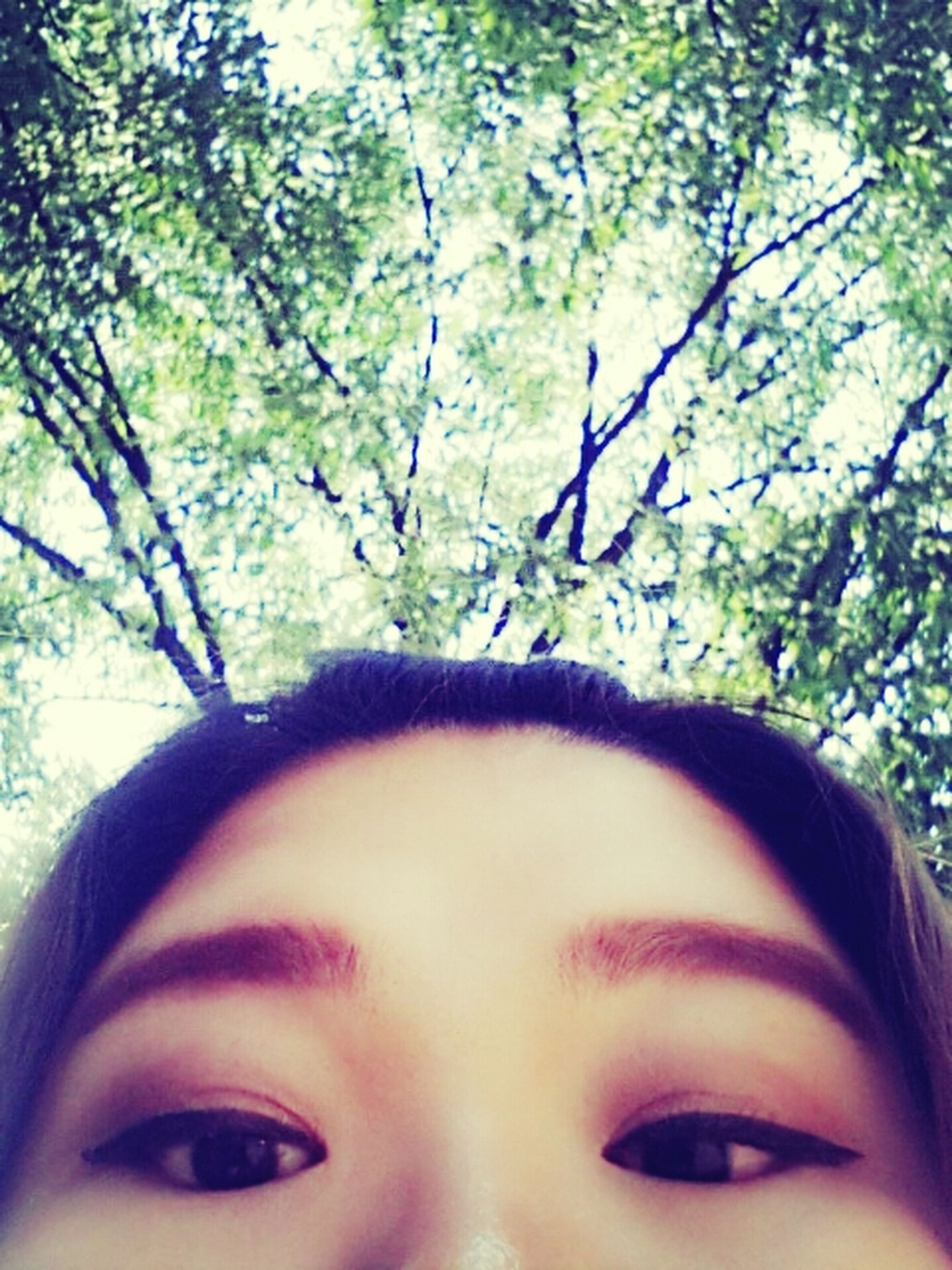 headshot, tree, lifestyles, young adult, leisure activity, person, looking at camera, portrait, close-up, human face, young women, front view, head and shoulders, focus on foreground, day, branch, smiling