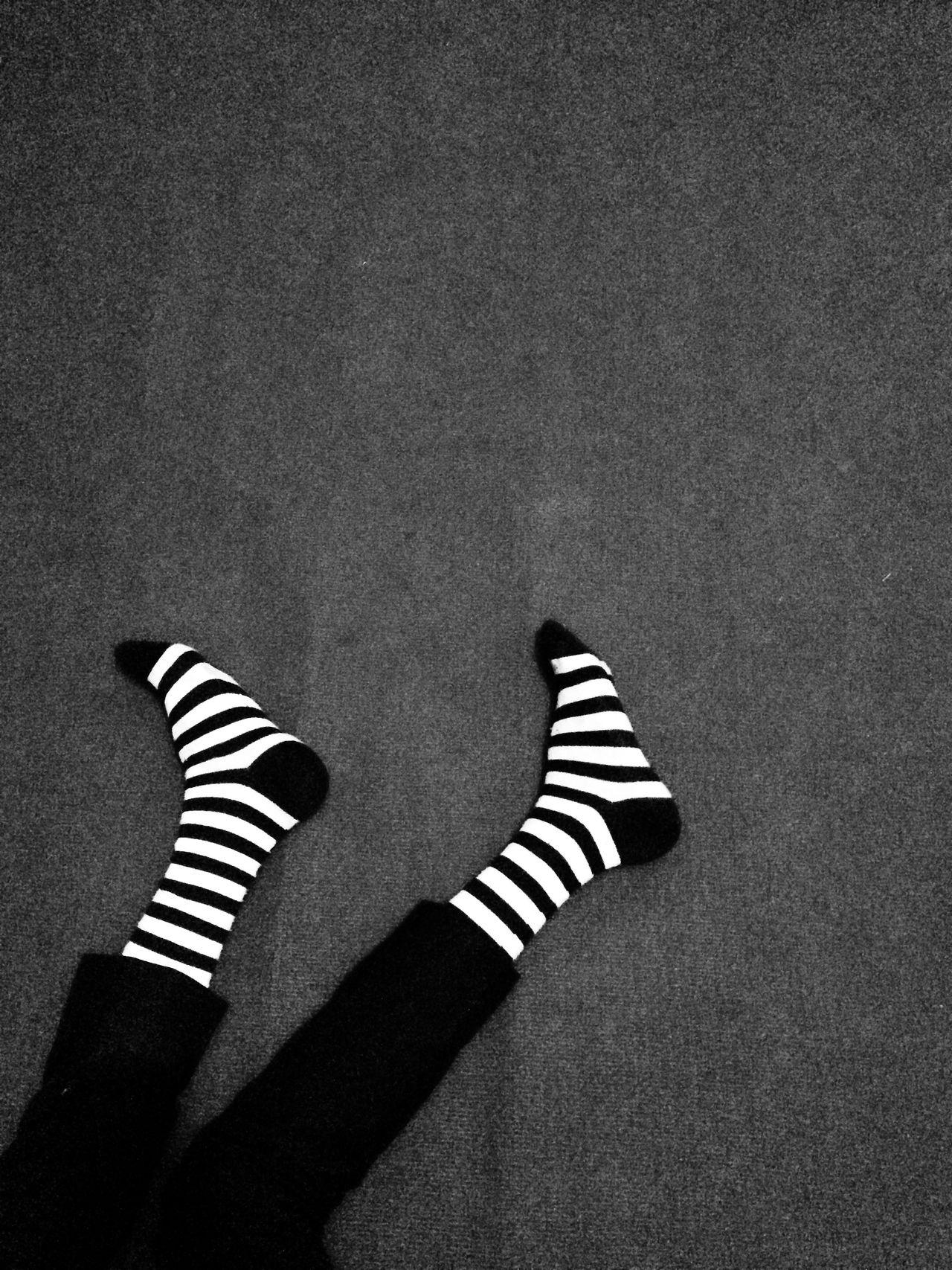 Zebra socks Sock Striped TK Maxx Socksie