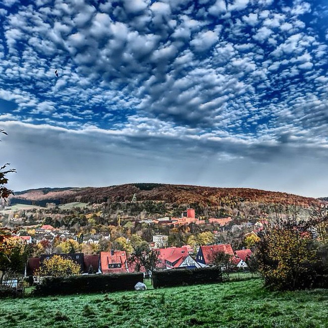 Sklblog Salzdetfurth