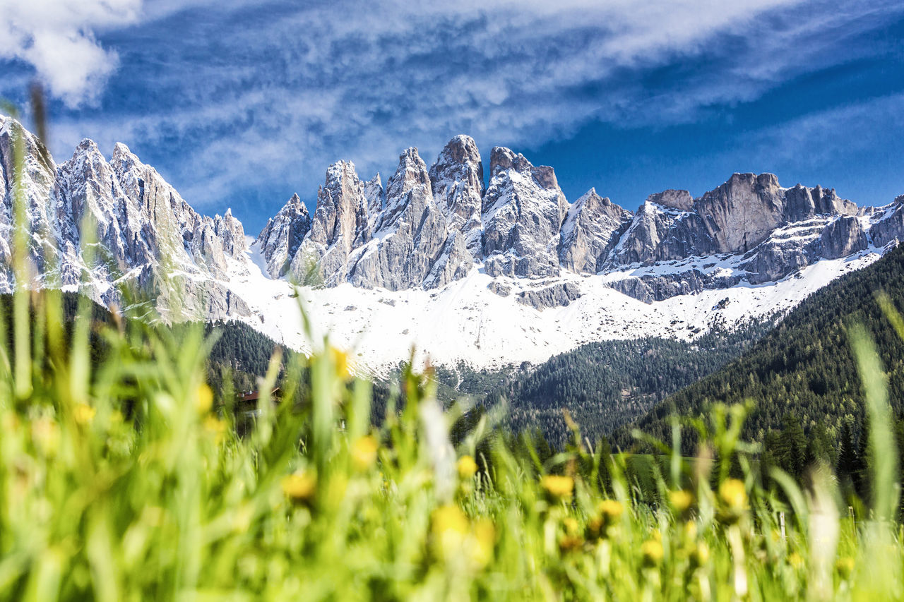 Spring at Villnöss valley with geisler group, Dolomites, South Tyrol Alm Alps Alto Adige Beauty In Nature Dolomites Funes Geisler Hiking Italy Meadow Mountain Range Odle Odles Pasture Puez-odle Rocks Seceda Snow Spring St. Magdalena Südtirol Vacations Val Di Funes Villnöss Villnöss The Great Outdoors - 2017 EyeEm Awards