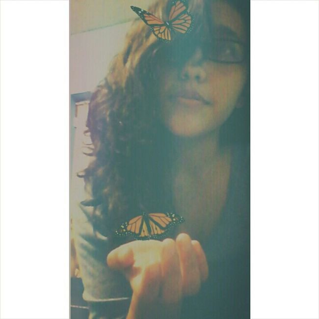 Butterflies Edit Flying Animals Myself IDK Tags And More Tags
