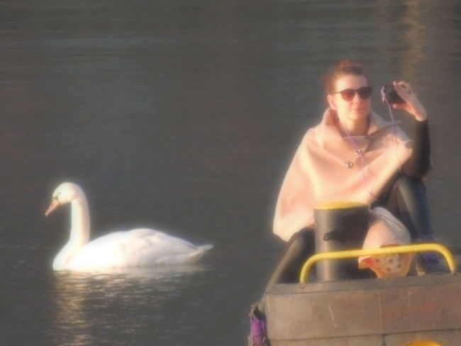 Lady & the swan. Animal Animal_collection Animals Animals In The Wild Authentic Moments Autumn Autumn Collection Autumn Colors Autumn🍁🍁🍁 Beauty Beauty In Nature Bird Girl Outdoors Selfie Selfie ♥ Selfie ✌ Selfienation Selfies Selfietime Selfie✌ Swan Swans Water Woman