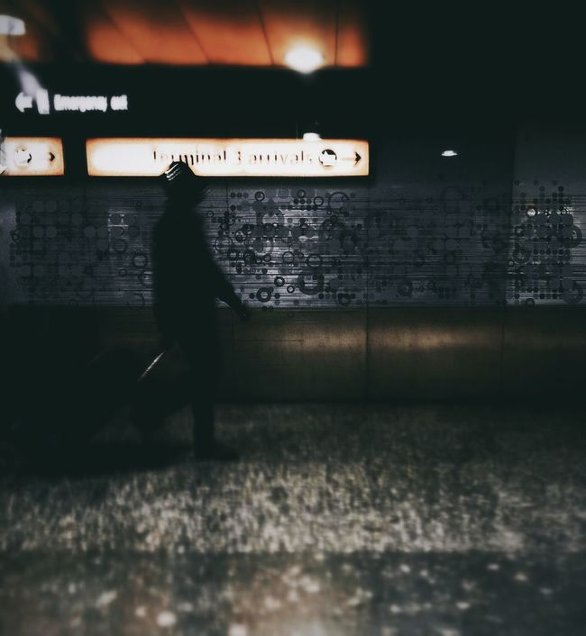 Terminal Arrivals Andrographer Decosketch Vscocam Snapseed
