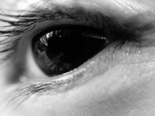 L'Oeil Human Eye Extreme Close-up Part Of Close-up Eyesight Backgrounds Full Frame Sensory Perception Eyelash Macro Selective Focus Extreme Close Up Looking At Camera Person Eyeball Iris - Eye Human Skin
