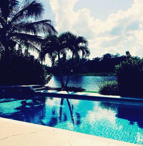 Pool day Miami