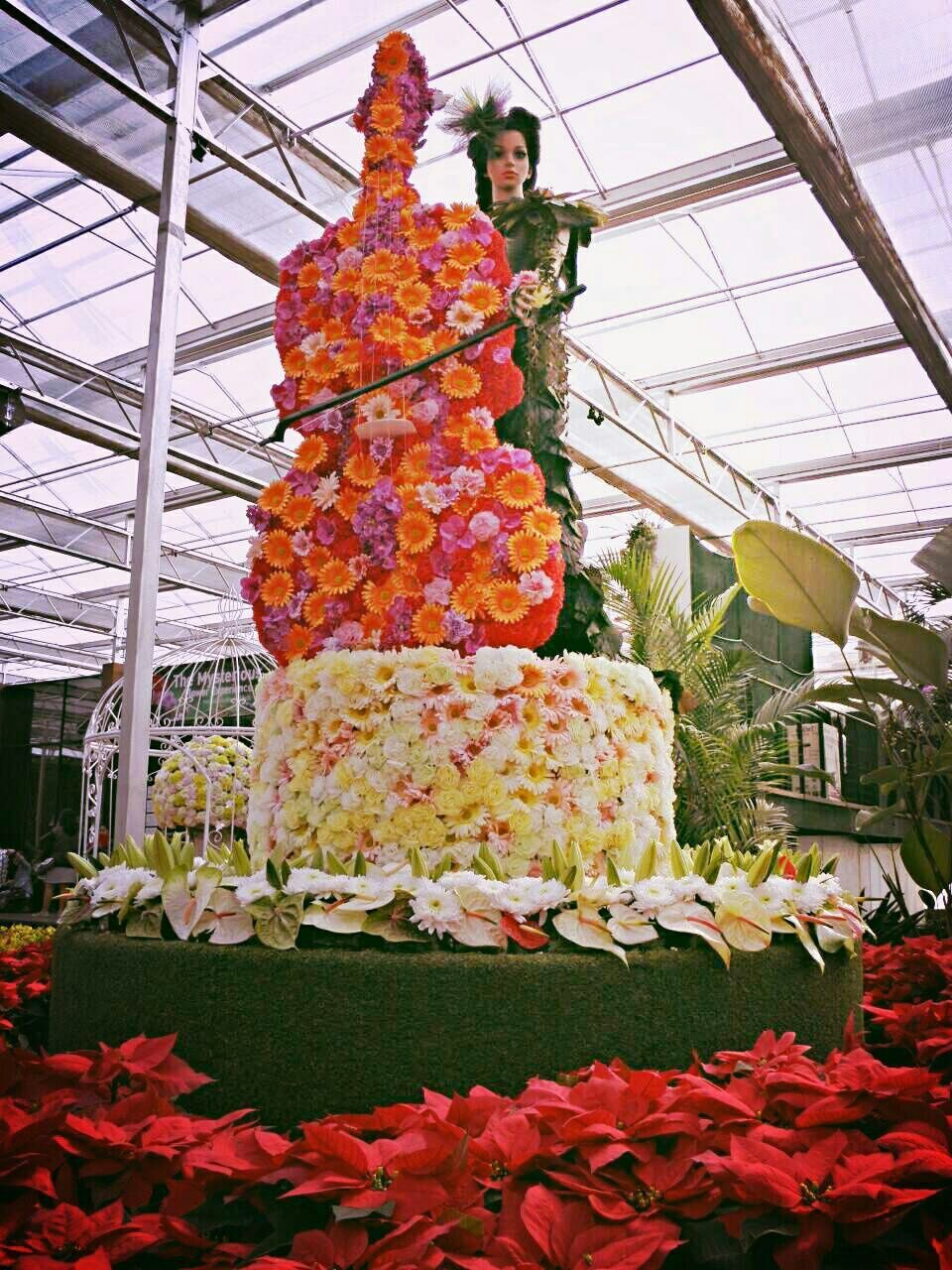 flower, wedding, freshness, celebration, food and drink, wedding cake, bride, life events, food, indoors, men, day, women, bridegroom, greenhouse, people