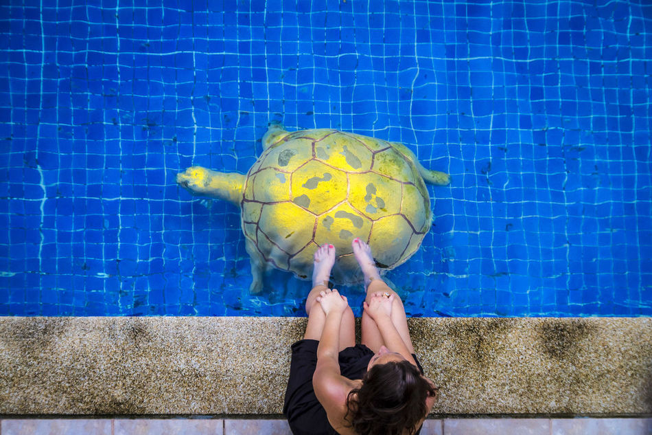 Beautiful stock photos of schildkröte, blue, human body part, one person, personal perspective