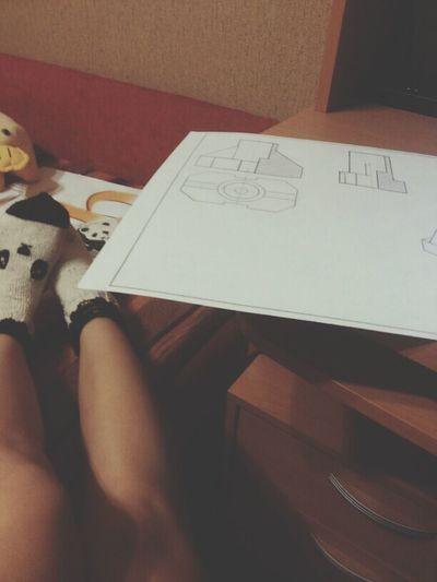 панды учеба ☆