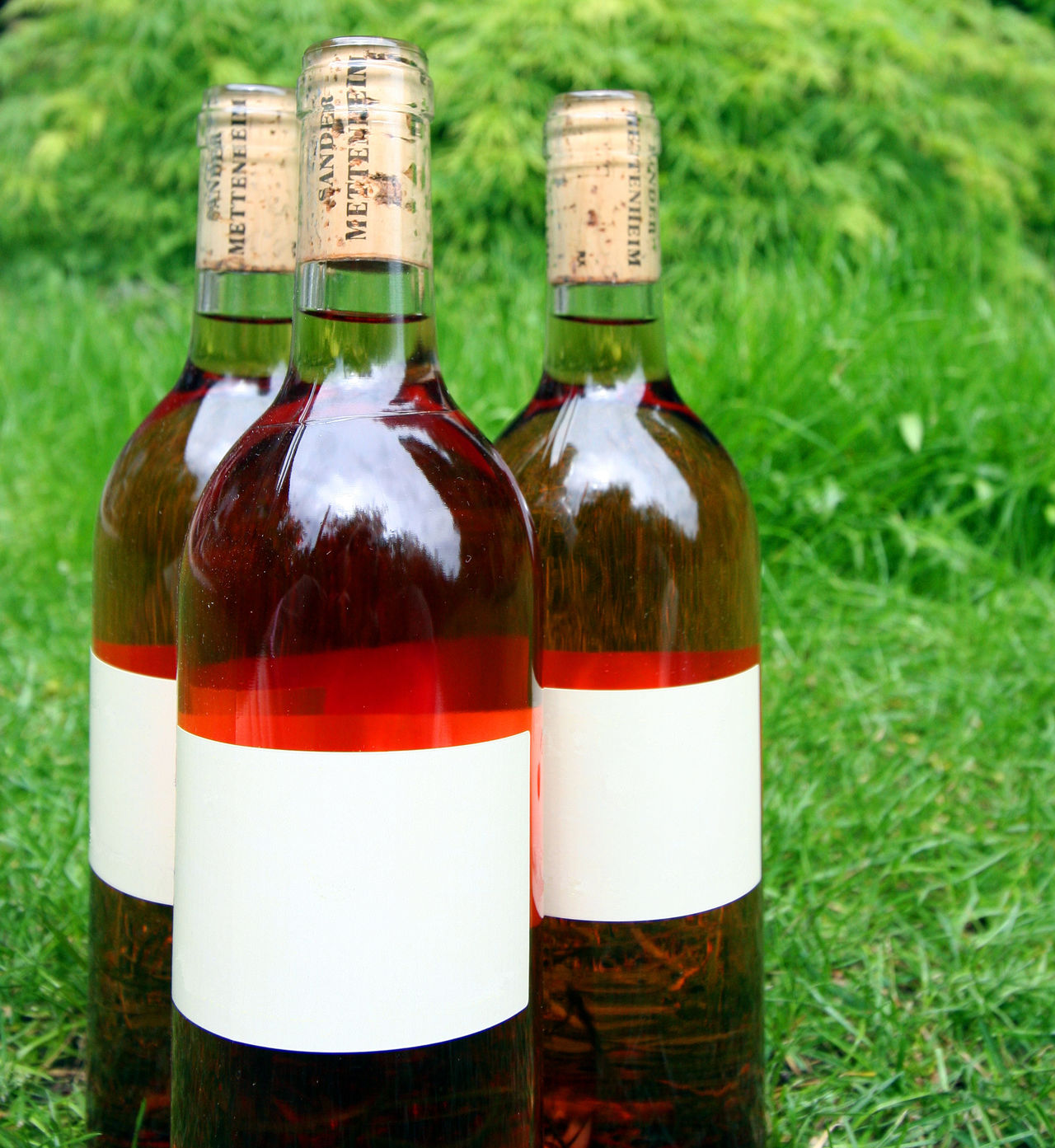 Wine Bottles - Trio Alcohol Beverage Blank Label Bottle Close-up Drink Food And Drink Garden Party Grass Invitation Label No People Outdoor Party Outdoors Party Picnic Rosé Three Objects Trio Wine Wine Bottle Wine Bottle Wine Bottles Wine Moments Winetasting