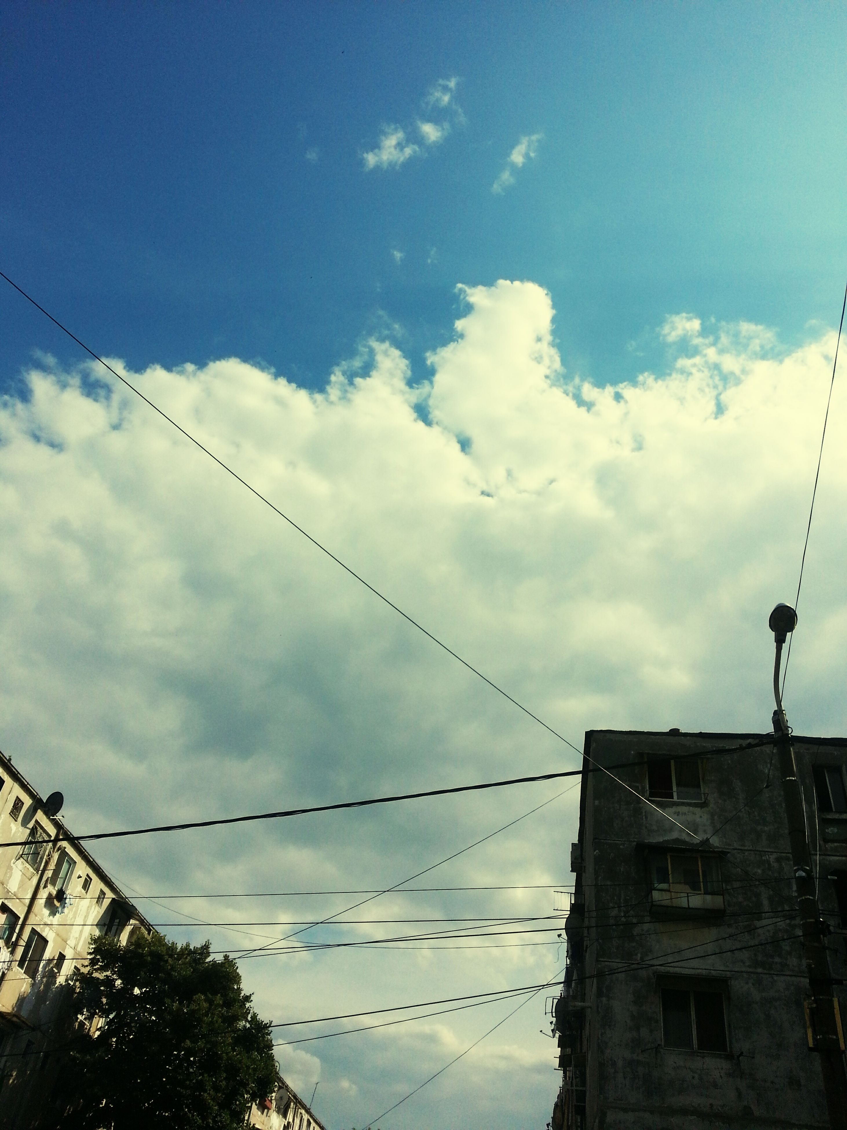 low angle view, power line, sky, bird, cable, architecture, built structure, connection, animal themes, building exterior, electricity, animals in the wild, cloud - sky, electricity pylon, perching, wildlife, power supply, silhouette, cloud