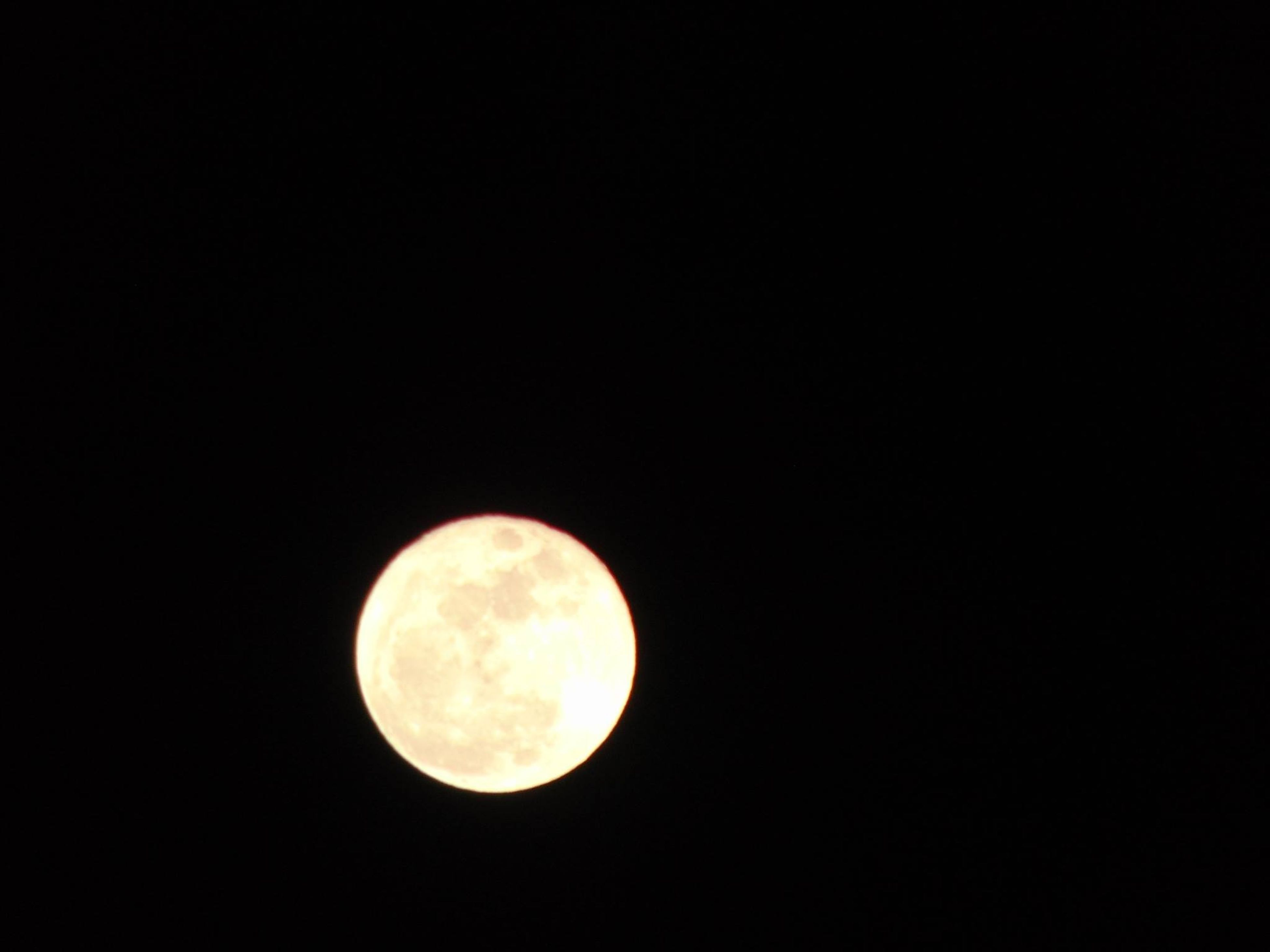 moon, astronomy, full moon, night, planetary moon, moon surface, circle, beauty in nature, dark, sphere, copy space, tranquility, discovery, space exploration, tranquil scene, nature, scenics, exploration, low angle view, majestic