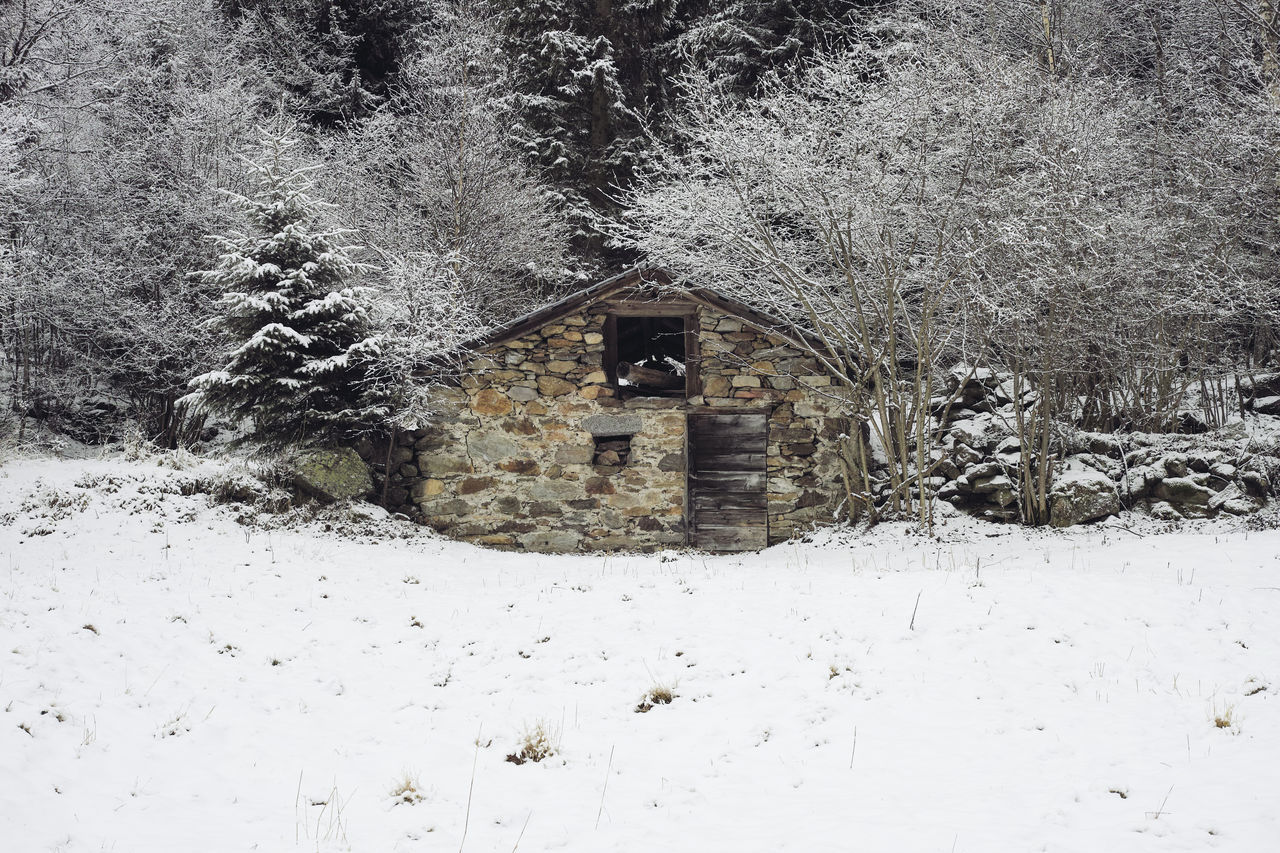 winter, cold temperature, snow, built structure, architecture, weather, nature, field, no people, house, building exterior, abandoned, outdoors, day, tree, beauty in nature
