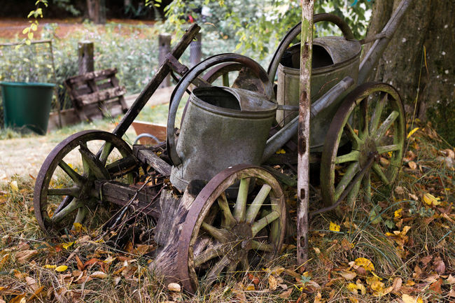 Abandoned Autumn Leaves Damaged Deterioration Fine Art Photography Garden Last Fall Days Metal Mode Of Transport No People Old Outdoors Parked Run-down Rust Rusty Transportation Tree Used No More Vehicle Waiting For Winter Watering Can Wheel Winter Coming Wood