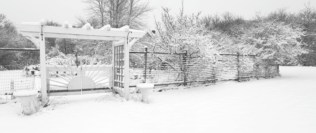 Winter Wonderland ❄ Snow Cold Temperature Nature Day No People Gate Fence Garden Frozen Trees