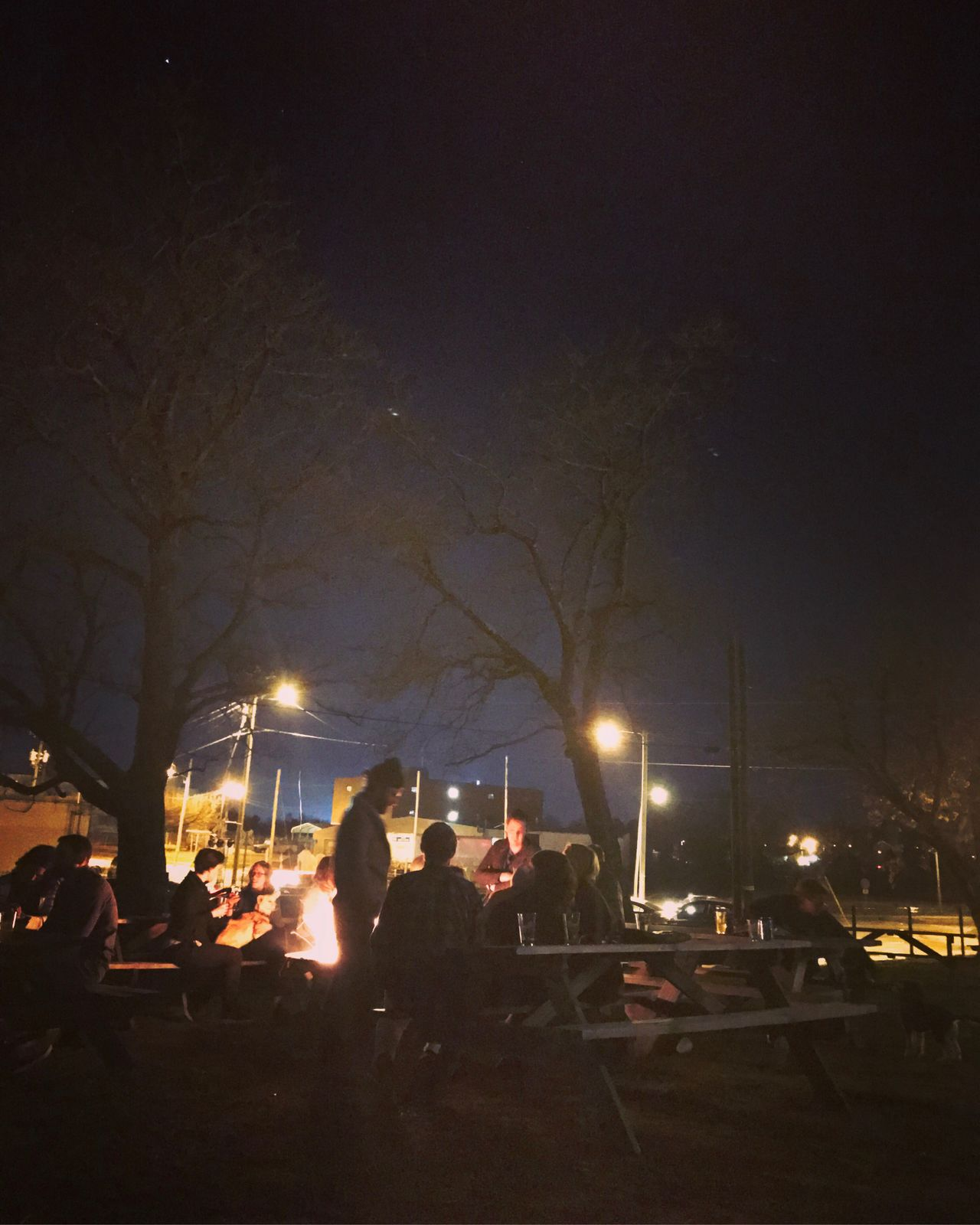 Campfire and beer. Night Illuminated Street Light Building Exterior City Outdoors Tree Real People Sky Campfire Bonfire