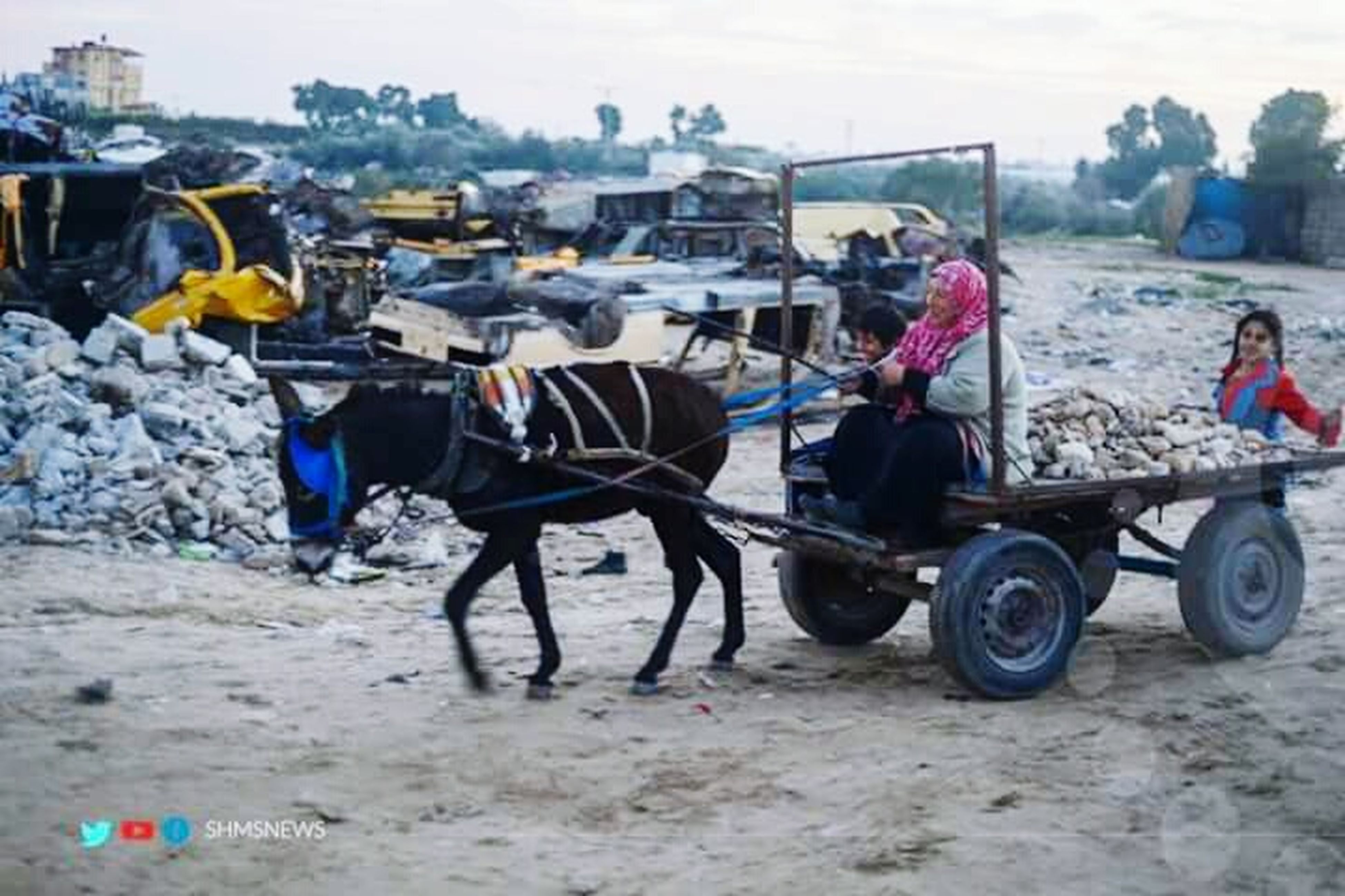 transportation, mode of transport, land vehicle, men, domestic animals, working animal, car, livestock, sky, horse, travel, day, building exterior, large group of people, animal themes, built structure, street, outdoors, person