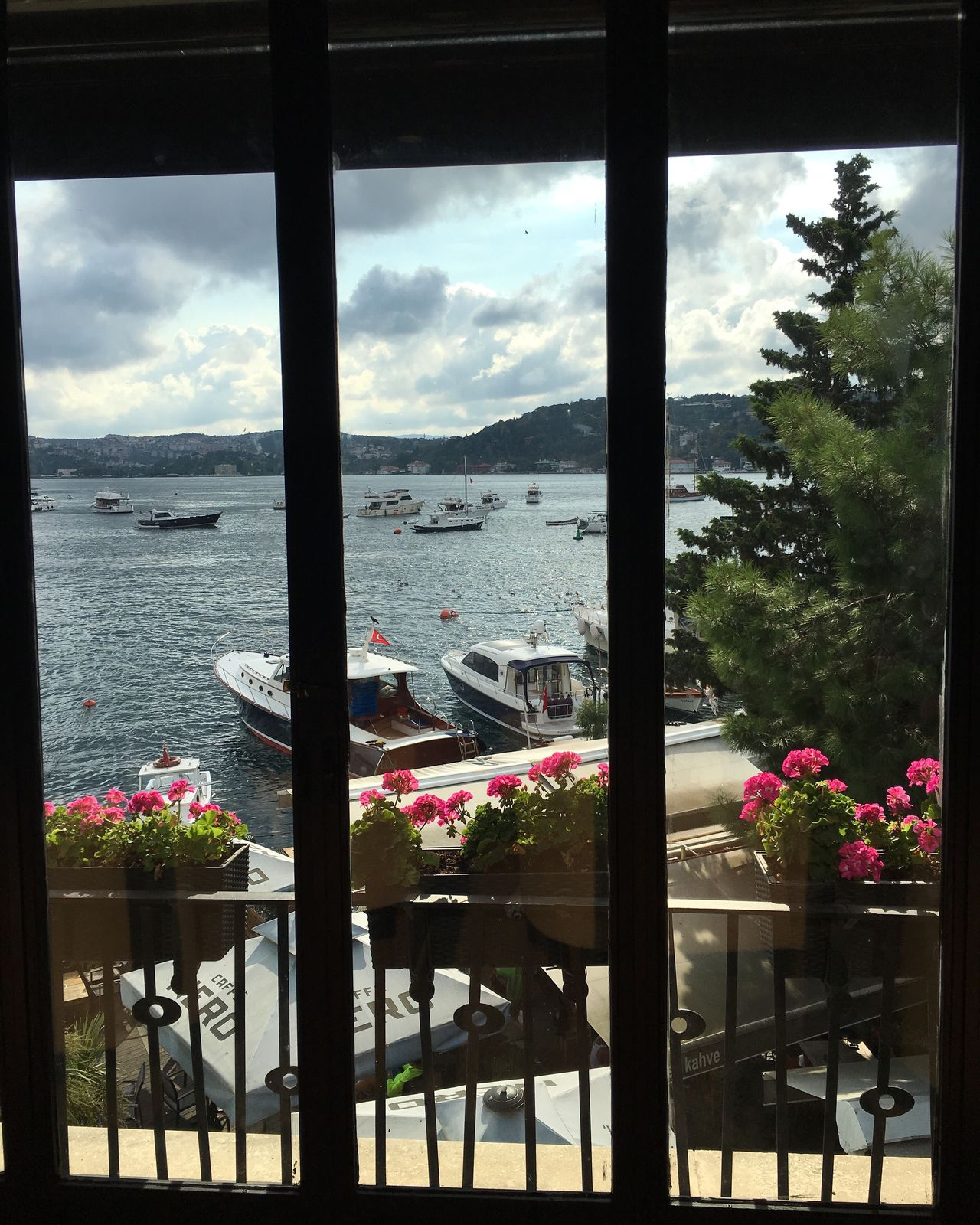 Istanbul, Bebek Istanbul Turkey Bebek Sea Flower Scenics No People Freshness View View From The Window...