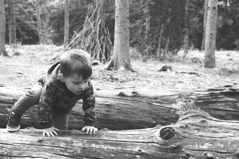 Childhood Tree Playing Outdoors Children Only Child Boys Wood - Material Real People First Eyeem Photo