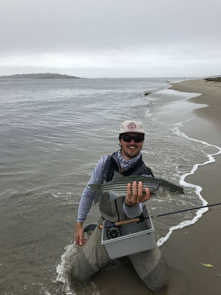 Water Fishing Stripers Orvis Fly Fishing