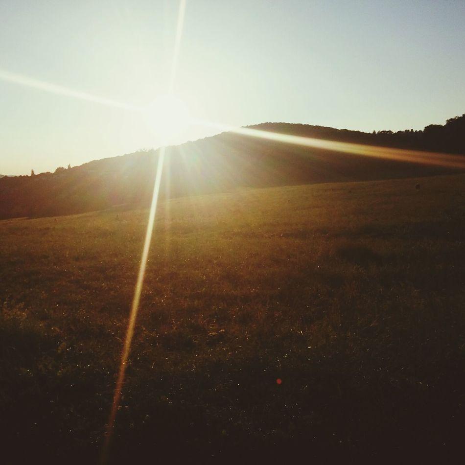Sommer Wien 2016 Sunlight Sun Sunbeam Nature Beauty In Nature Landscape Outdoors Sunset Day No People Lens Flare Sky Scenics Refraction 2016 Vienna Austria 1160 Wien Österreich Urlaub Heaven Paradies First Eyeem Photo