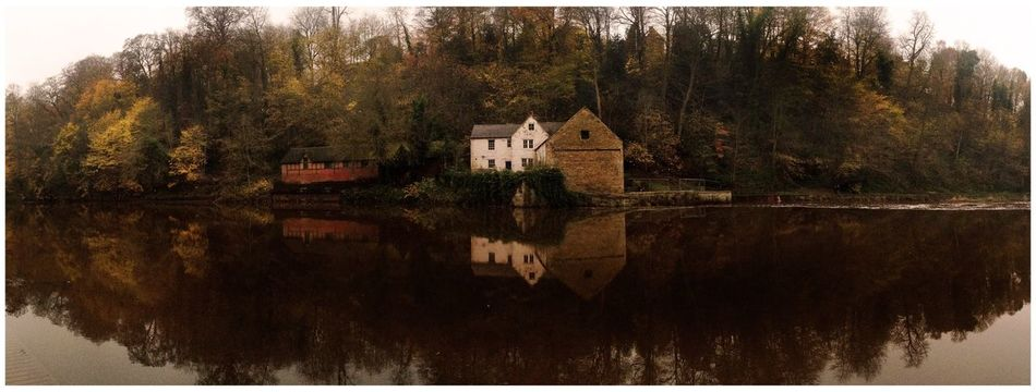 Waterscape in Durham Reflection Reflections Reflection_collection Reflected Glory Water Reflections Water Water_collection River Riverside Buildings Tree Trees Reflections In The Water Spring Colours Eyemphotography Check This Out EyeEm Gallery Eye4photography  EyeEm loved the colours in this reflection Enjoying Life Landscapes With WhiteWall Panorama Panoramic Photography