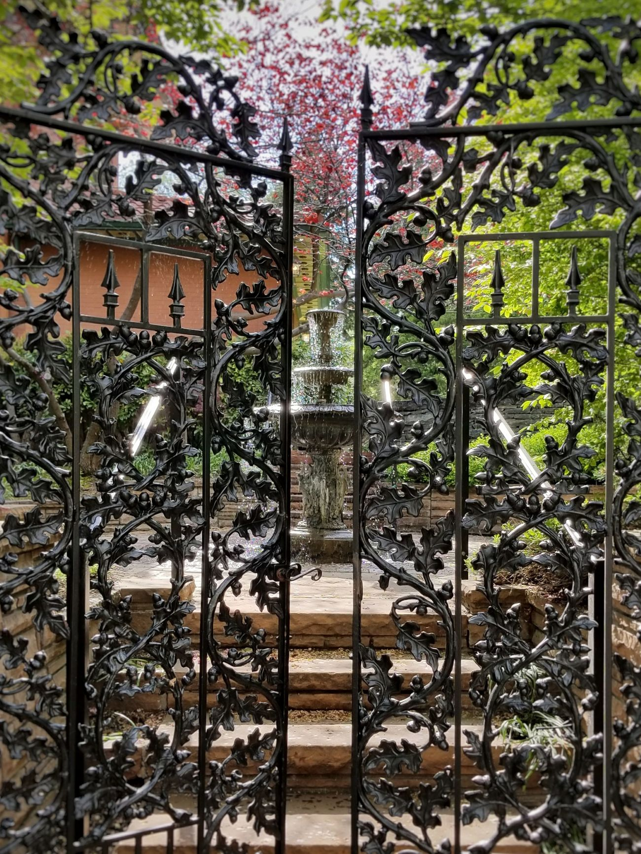 Hidden garden. No People Backgrounds Day Pattern Full Frame Outdoors Close-up Trees Architecture Fountains Wrought Iron Gate EyeEm Best Shots
