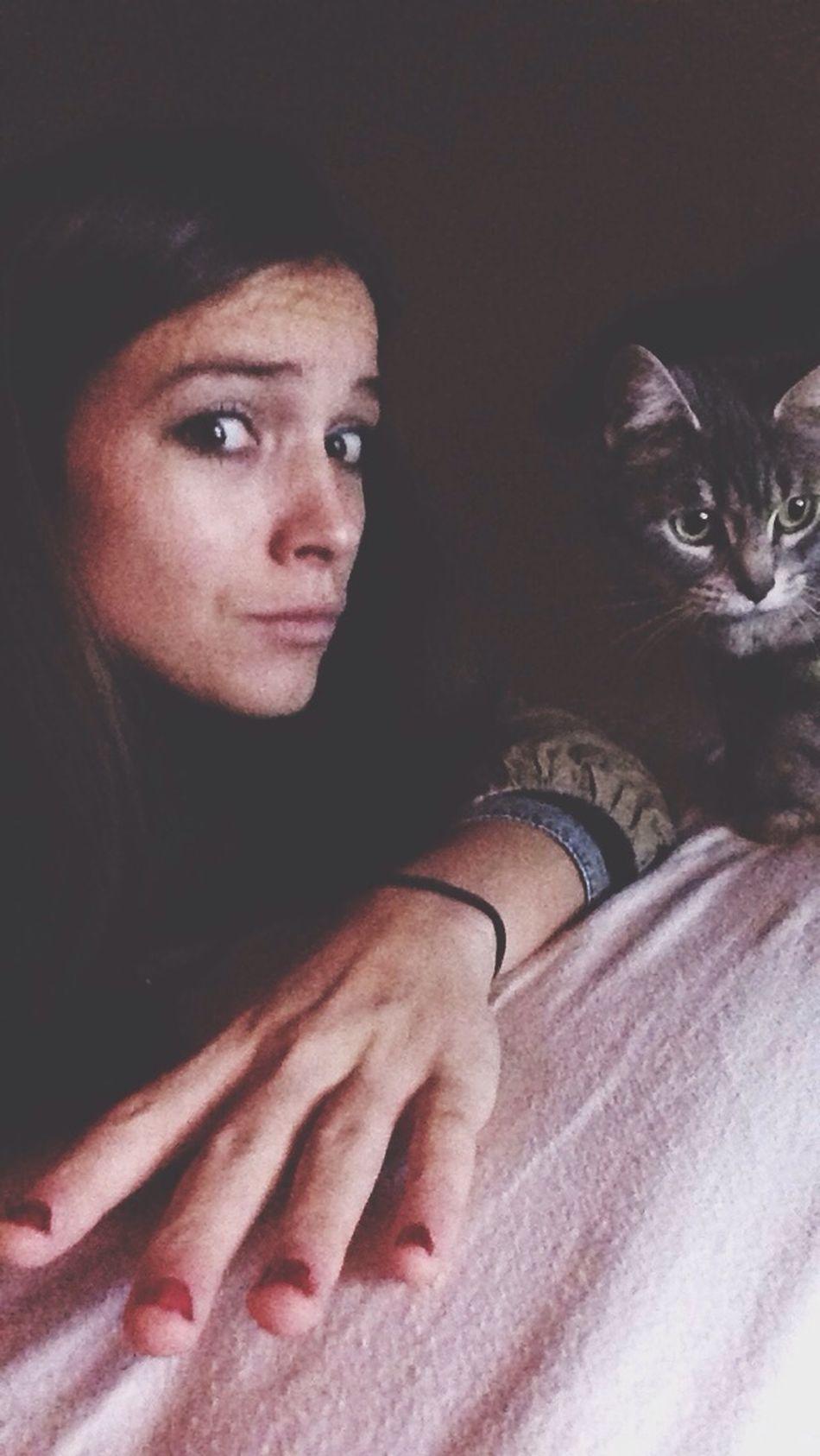 Share Houna Cat Love Intimity