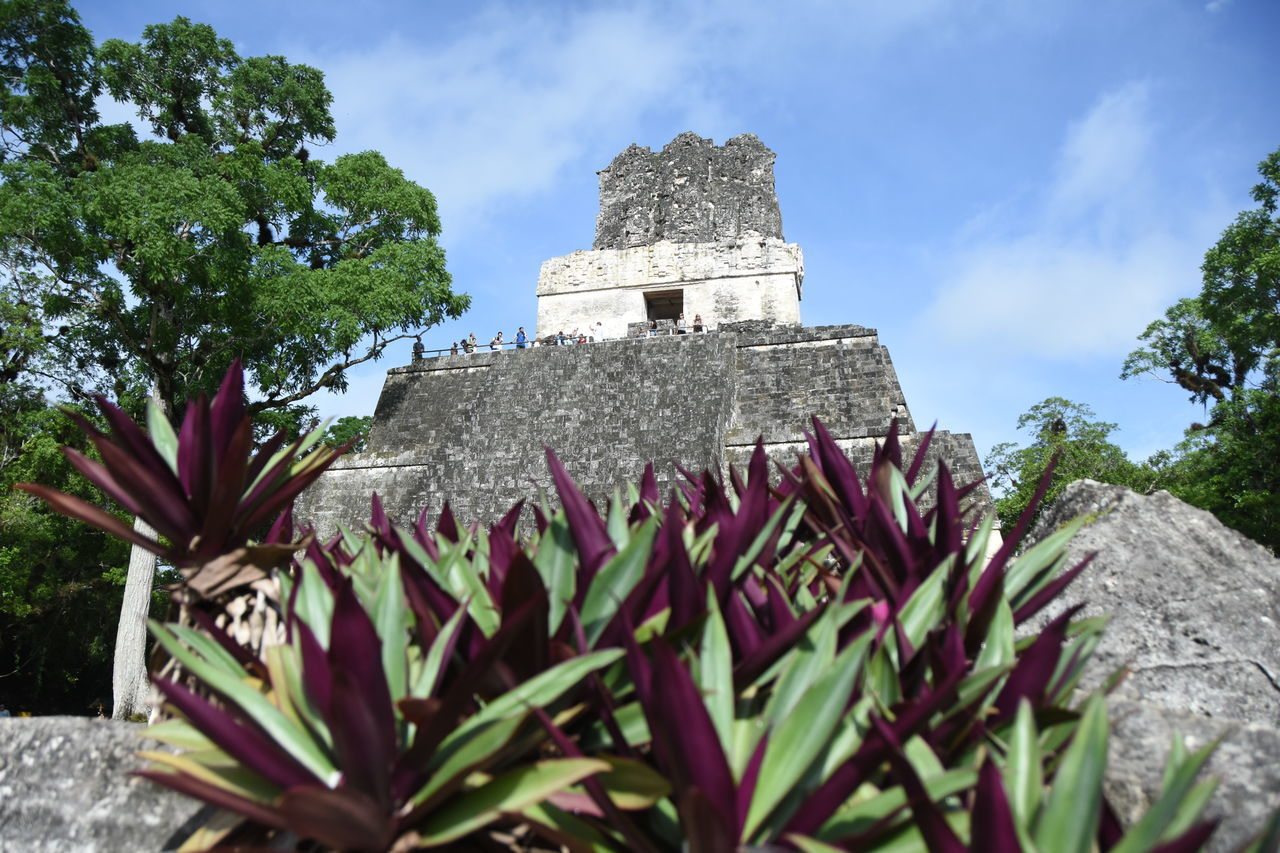 Eye4photography  EyeEm Best Shots EyeEm Gallery EyeEm Nature Lover Green Color Guatemala Historic Historical Building Historical Sights History Mayan Mayan Ruins My Favorite Place No People Optical Illusions Outdoors Pyramid Sightseeing Temple Tikal Travel