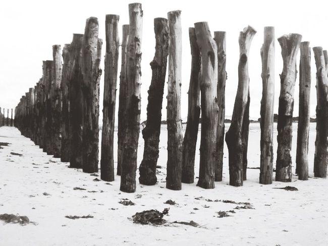 Plage Beach Saint Malo Blackandwhite Noir Et Blanc Black & White Shades Of Grey