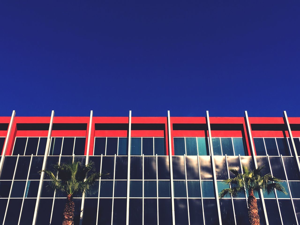 copy space, blue, low angle view, clear sky, growth, outdoors, no people, day, architecture, nature, sky
