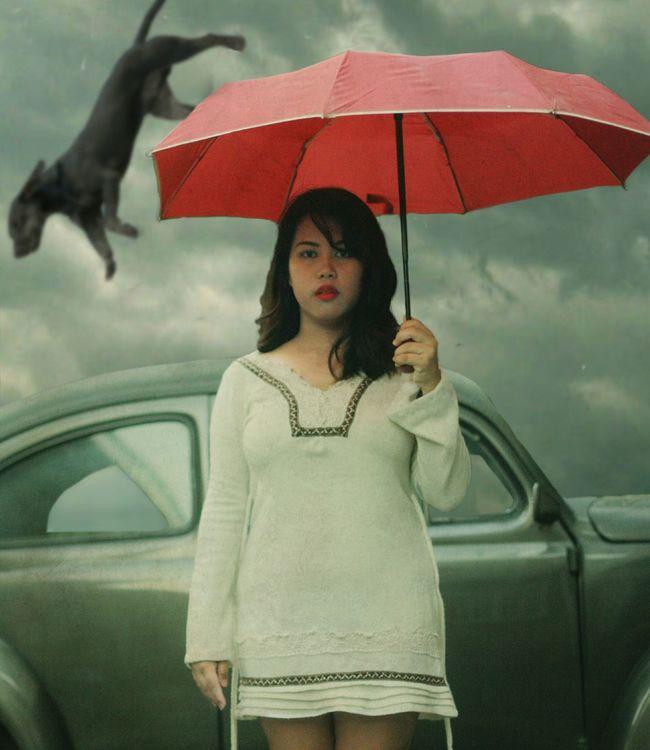 the fifth stage of grief Depression Movingon MoveOn Mentalillness Mentalhealth  Depressive Shield Umbrella Red Umbrella Redumbrella