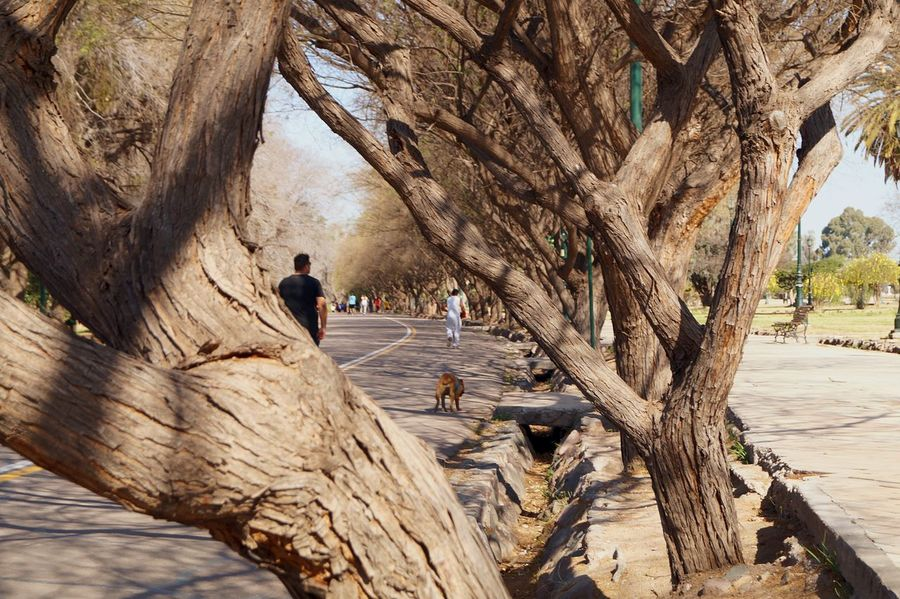 Enjoying Life Hanging Out Parks And Recreation People Walking  Mendoza