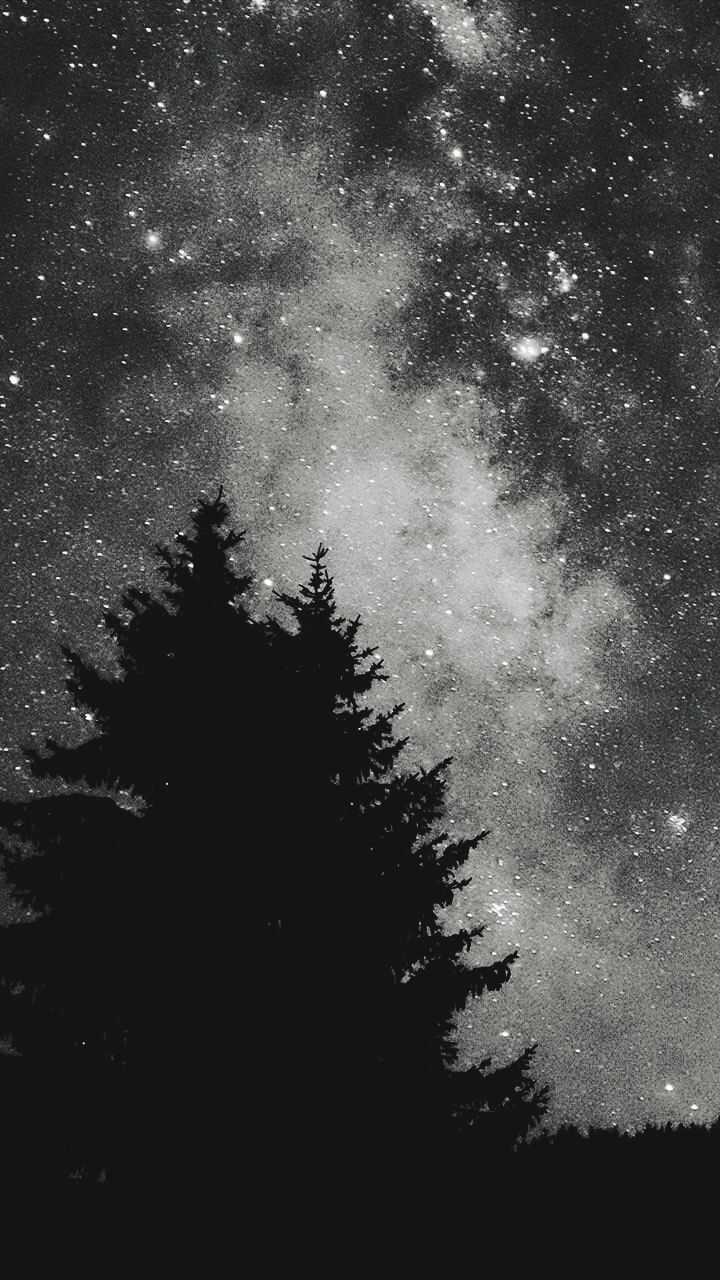night, star - space, tree, astronomy, nature, silhouette, tranquility, no people, beauty in nature, low angle view, tranquil scene, galaxy, scenics, sky, outdoors, starry, milky way, space, constellation