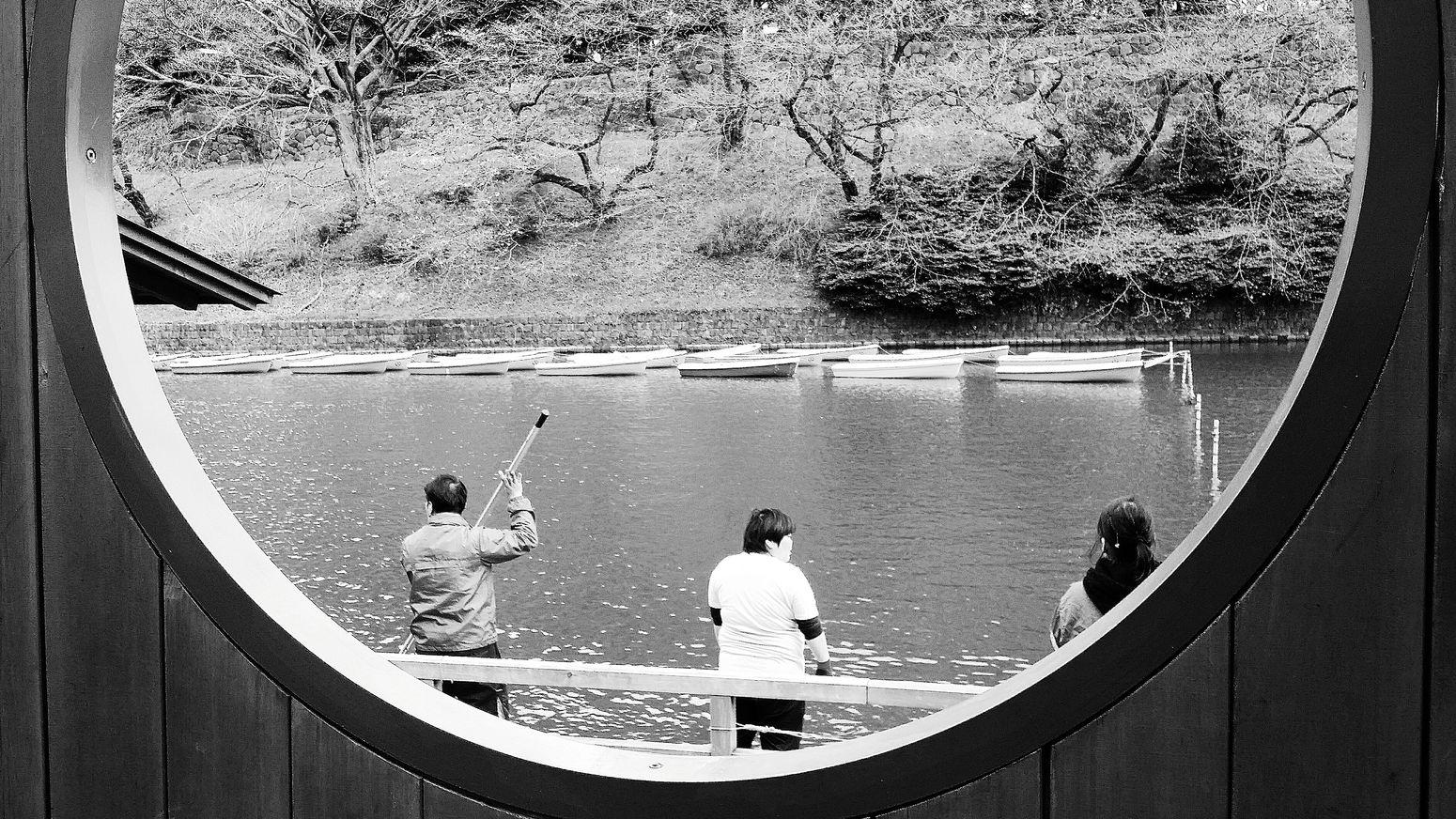 Boating Spring Chidorigafuchi Tokyo Streetphotography Japan Bnw_spring Bnw_tokyo Bnw Nature Bnw_life Bnw_collection Bnw_streetphotography Bnw_planet Eyeemcollection EyeEm Gallery Eyeem Nature EyeEM Tokyo Eyeem Spring Eyeemphotography Eyeem Streetphotography Showcase April