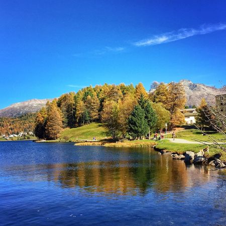 Last Sunday - on the route - Graubünden - Wallis St.Moritz IPhoneography SwissAlps! Eye4photography  Colors Of Autumn