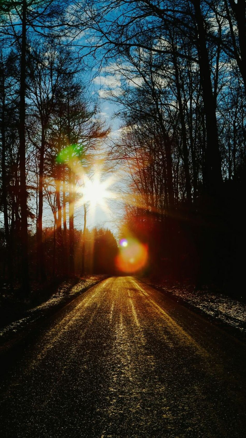 The Way Forward Sunbeam Sunbeams Sun Sunlight Sun_collection Lensflares Tree Trees Tree_collection  Hugging A Tree Forest Woods Walk In The Woods Outdoors No People Nature Beauty In Nature EyeEm Nature Lover Nature_collection Naturelovers Tranquility Tranquil Scene Scenics Road
