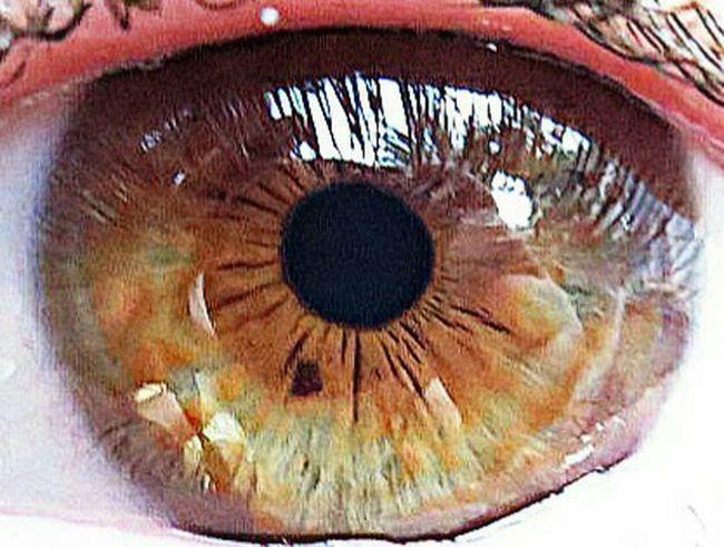 El ull de la meua amada Hi! Tonibriz Tonibrizm Tonibm Relaxing Eye Ojo Ull Picksart Taking Photos