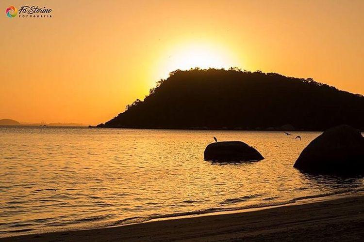 Sunset Sea Water Tranquil Scene Beauty In Nature Mountain Tranquility Nature Sky Brazil Rio De Janeiro Paquetá Island Brasil Natureza Paisagem Por Do Sol Ilha De Paquetá