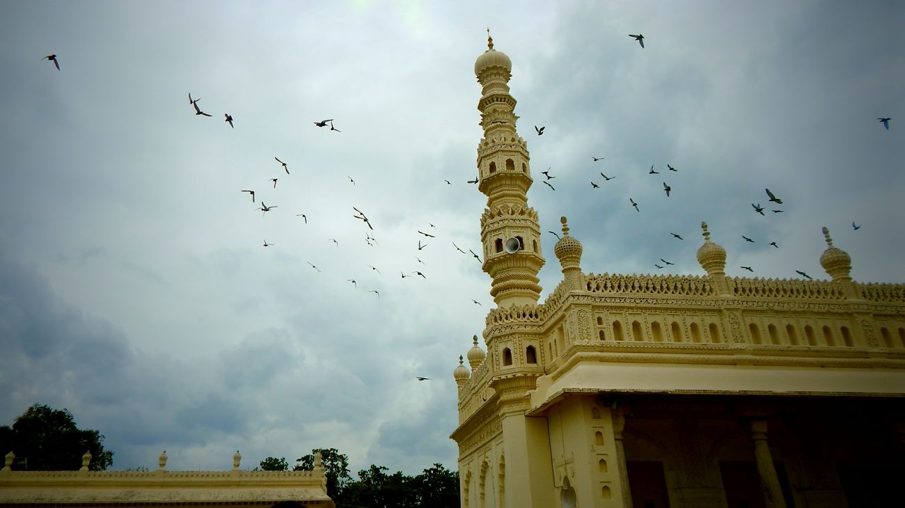 Sky Flying Cloud - Sky City Flock Of Birds Low Angle View No People Outdoors Bird Capture The Moment Check This Out First Eyeem Photo Monument Minimalist Architecture India Architecture Building Exterior India History Architecture Birds Of EyeEm  Built Structure Architecture_collection