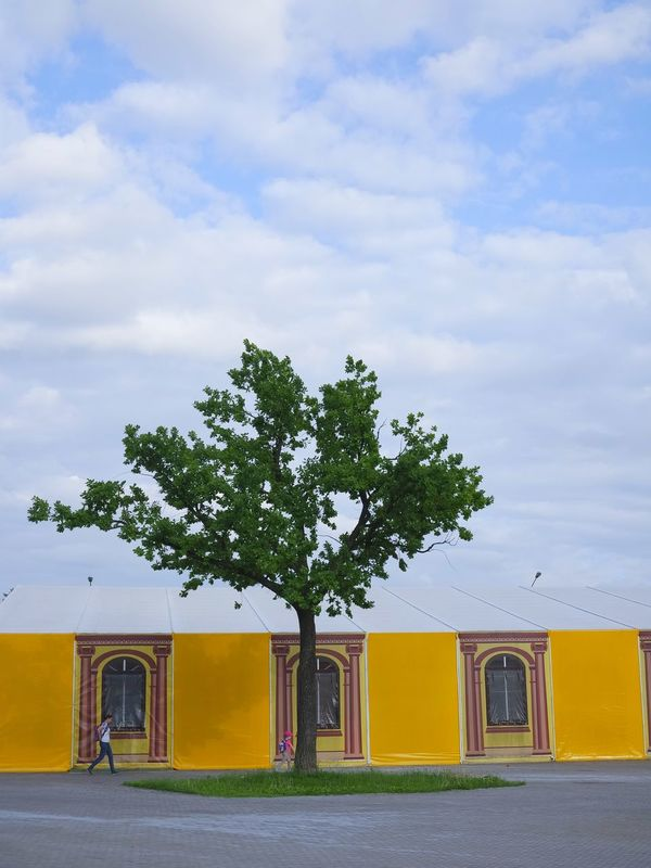 Renovation Architecture Banner Building Exterior Built Structure Cloud - Sky Day Nature Outdoors Sky Summer The Way Forward Tree Yellow