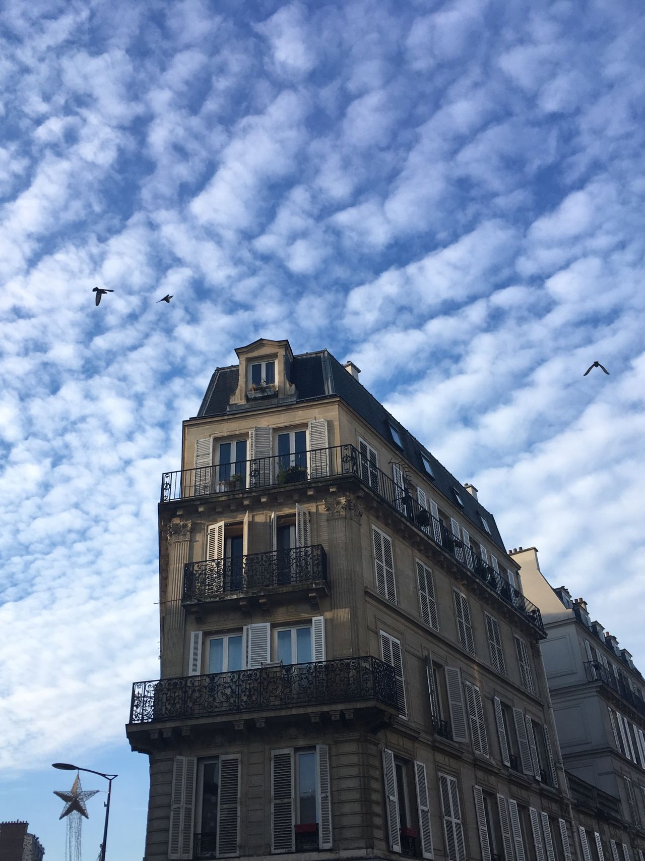Low Angle View Building Exterior Architecture Built Structure Sky Flying Cloud - Sky Bird No People Outdoors City Day Animal Themes Nature