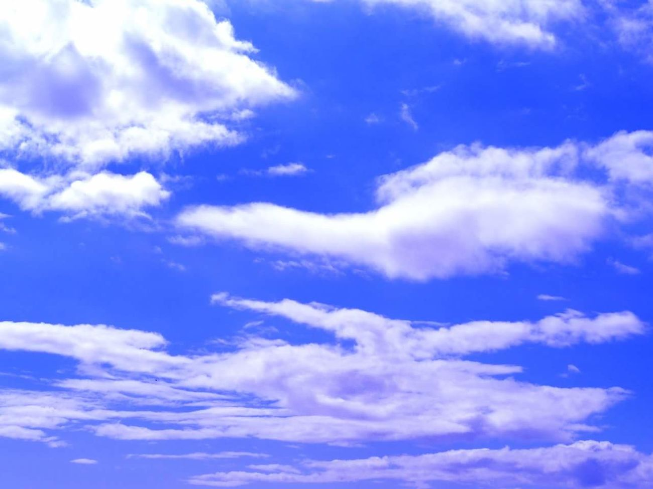 Blue Sky Cloud - Sky Heaven Nature Backgrounds Cloudscape White Color Weather Beauty In Nature Fluffy No People Outdoors Silence Cumulus Cloud Softness Scenics Dramatic Sky Abstract