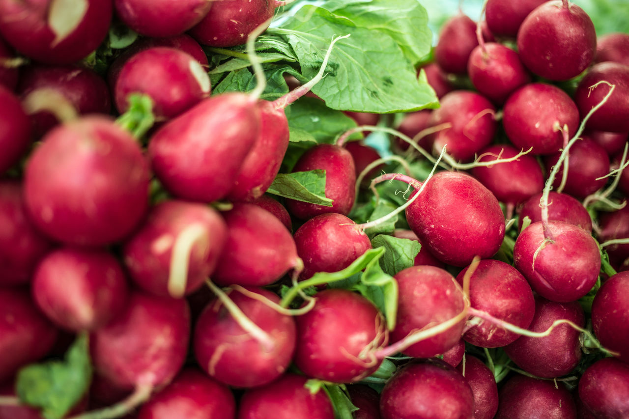 fresh radish on a market Blur Blurred Canon6d Close-up EyeEm Gallery Focus Object Food Foodphotography Freshness Freshness Healthy Eating Large Group Of Objects Leafes Nature Radish Radish Sprouts Raw Raw Food Unprepared Vegetable Veggie