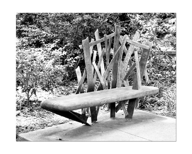 Park Seating 4 Atlanta Botanical Gardens Still Life Still Life Photography Bench Hardwood Wooden Bench Metal Backrest Wood And Metal Welded Cross Angles Welded Art Abstract Art Garden Seating Bench On Concrete Slab Garden Monochrome Black & White Black And White Landscape Black And White Photography Lovers Bench Black And White Collection